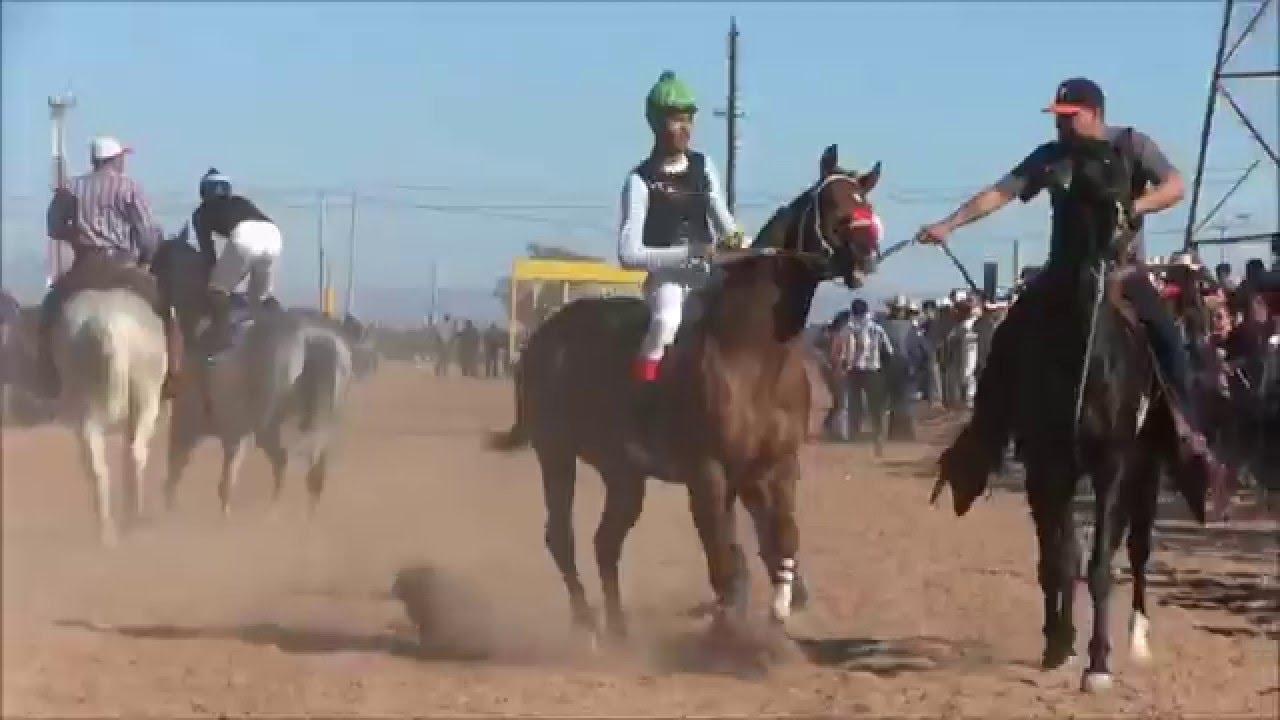 Carreras de caballos virtuales jokerbet casino - 76417