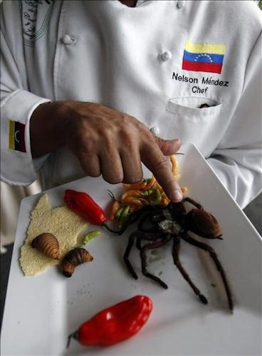 Www miapuesta es casino888 Venezuela online - 51439
