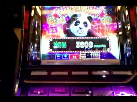 Casino panda - 62354