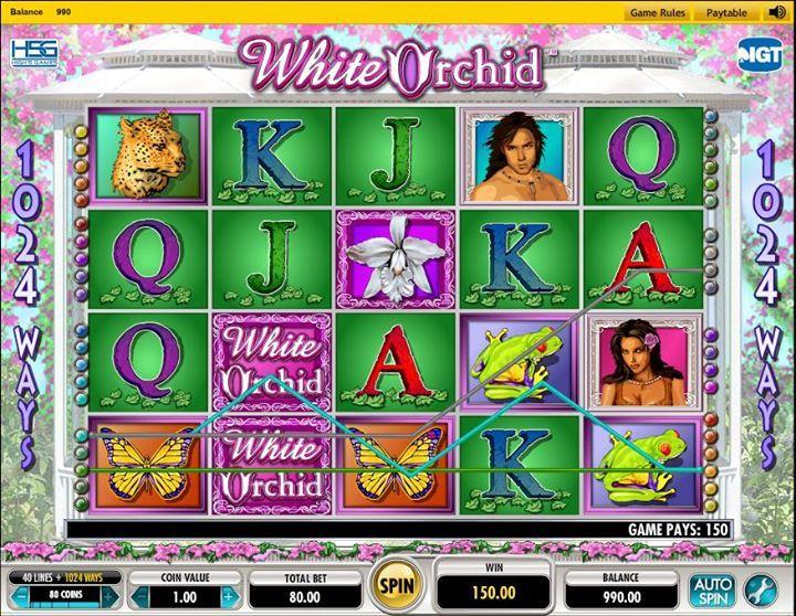 Carnaval casino - 31358
