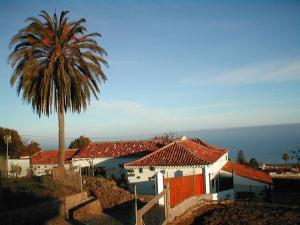 Palace online casino confiable Tenerife - 20772
