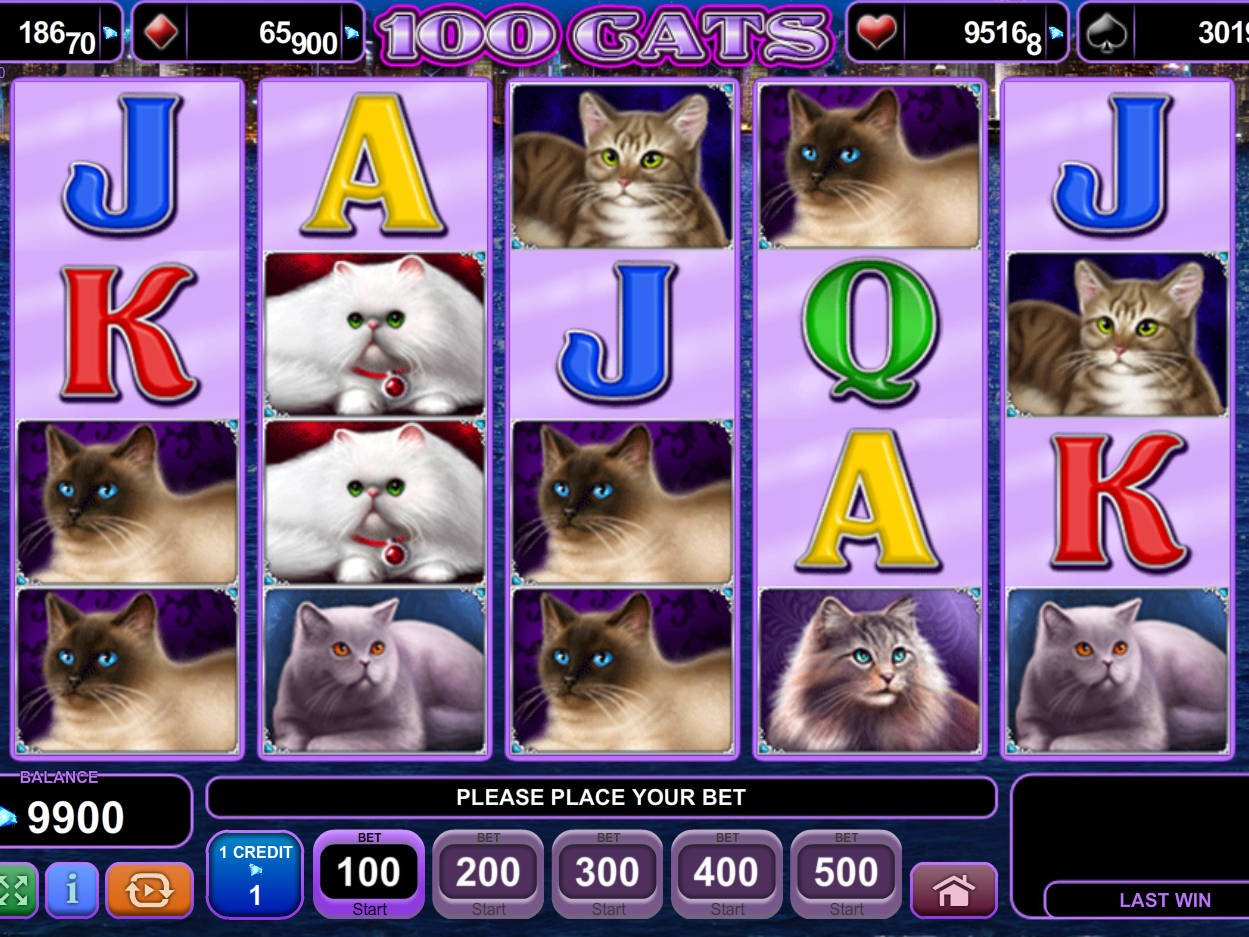 Tragamonedas Gratis Cats & Cash casino net - 37650