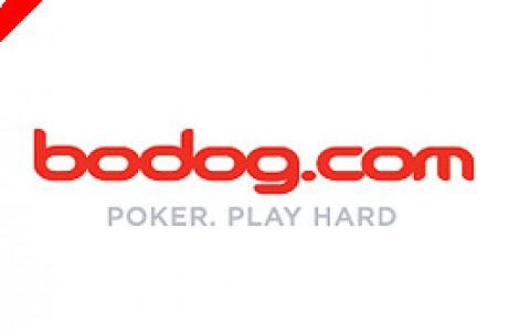 Como sacar probabilidades en el poker online Playtech - 46138