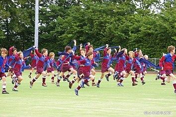 Opiniones tragaperra Rugby Star juego a traves de la historia - 72506