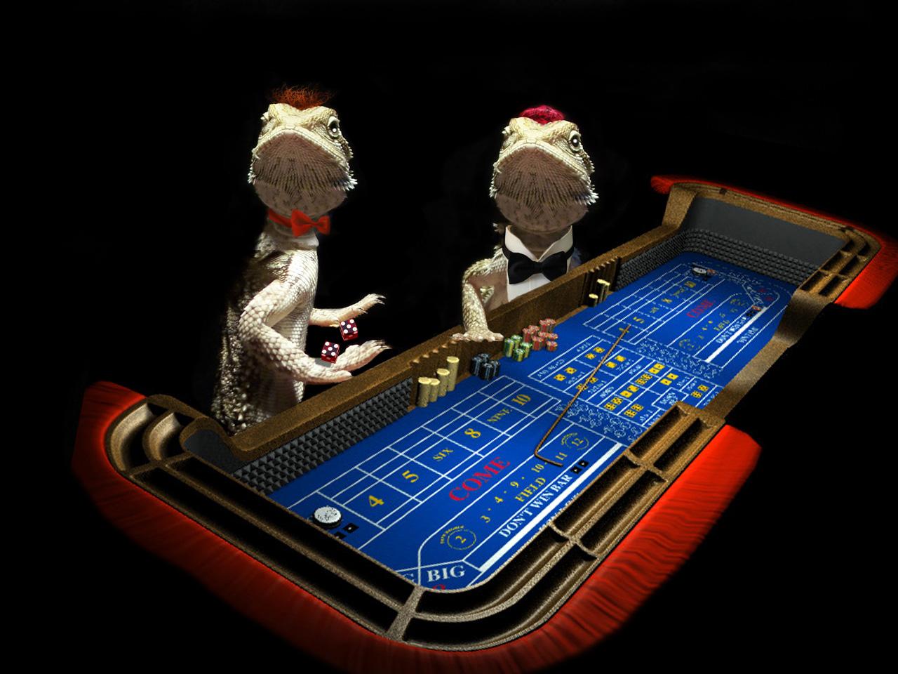 Spin palace opiniones casino online Santa Cruz - 14531